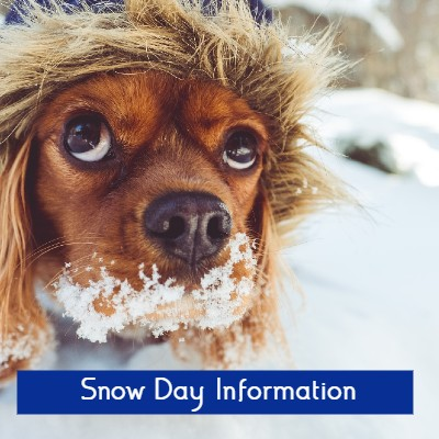 Snow Day Information